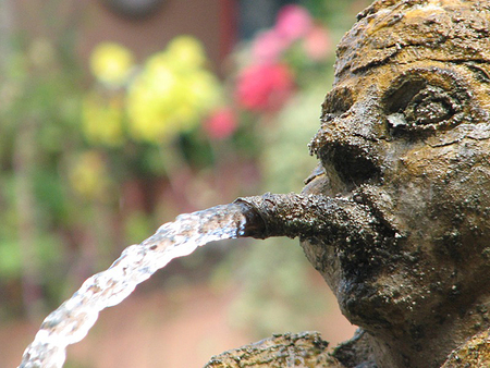 Water coming from the mouth of a cherub fountain in a piazza in the town of Tuscania in Lazio, Italy. Flowers out of focus in the background.