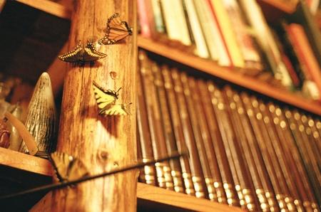 butterflies on a book shelf