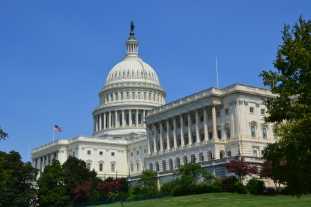 The U S  Capitol Building Washington DC Reklamní fotografie