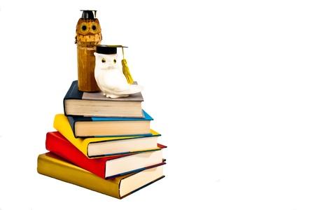 onderwijs: Twee uilen dragen mortarboards baars boven op een stapel boeken.