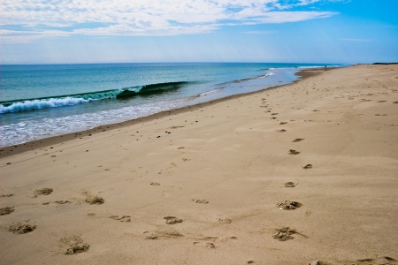 A track of footprints leads to the surf of Nauset beach, Cape Cod, MA