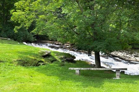 東アーリントン (バーモント州) で急いでストリームと一緒に怪しげなツリーの下に座っているベンチ 写真素材