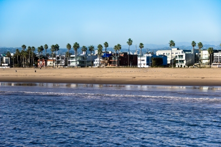 Palm trees stand alongside buildings on the Venice Beach, California, coastline.
