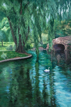 willow tree: A white swan swims in a park pond amid reflections of a weeping willow tree.