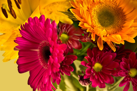 mixed flower bouquet: A showy magenta flower stands out in a bouquet of mixed bright flowers.
