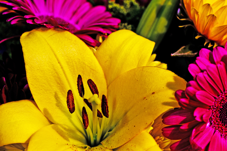 A Yellow Lily commands attention in a colorful bouquet.