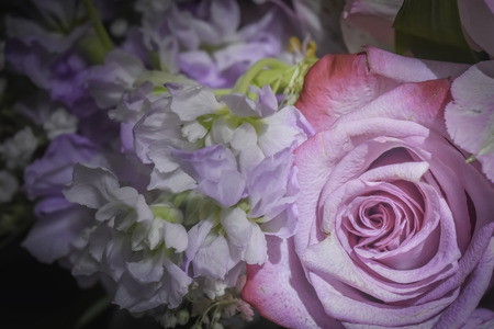 Pink Rose and Purple and White Flower Bouquet Closeup