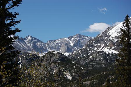 Colorado Rocky Mountains between two  Evergreens Фото со стока