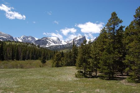 capped: Snow Capped rocky mountains and evergreens