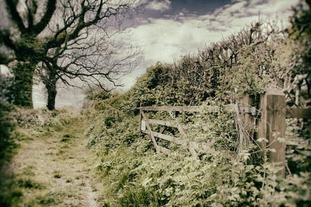 byway: vintage lane and gate