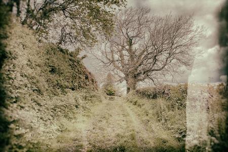 byway: vintage lane