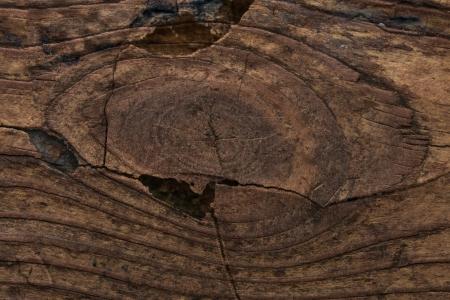Grunge Wooden Cracked Background