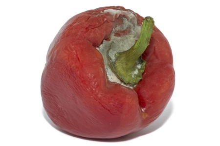 Close Up Of Moldy Bell Pepper On White Background