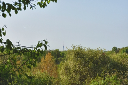 Berlin TV Tower And Green Environs