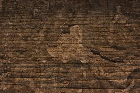 Brown Wooden Cracked Grunge Background