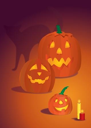Three pumpkins and a cat