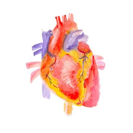 Heart Stock Photo - 9832119