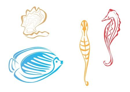 Marine life Illustration