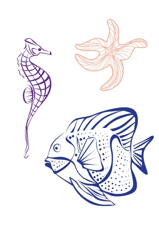 hippocampus: Marine elements