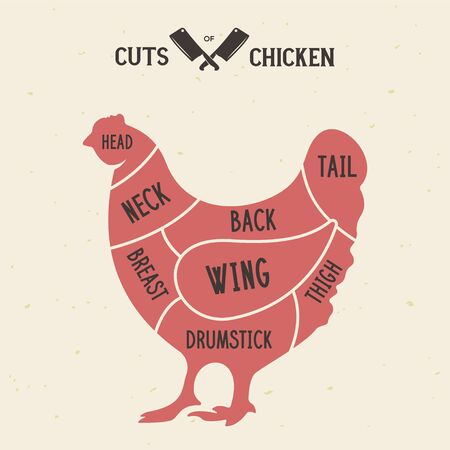 Meat cuts - chicken. Diagrams for butcher shop. Scheme of chicken. Animal silhouette chicken. Guide for cutting. Vintage vector illustration.