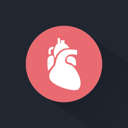 human heart anatomy: Human heart icon