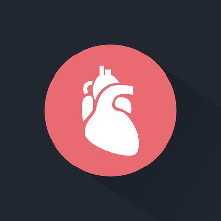 Icono del corazón humano Foto de archivo - 47244735