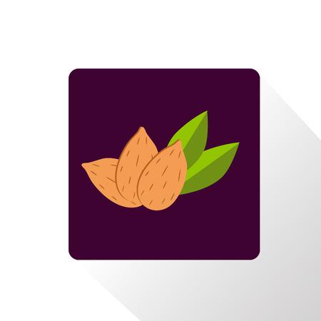 almonds: Almonds icon Illustration