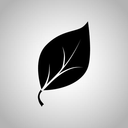 the icon: Leaf icon Illustration