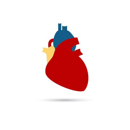 signos vitales: icono de color coraz�n humano Vectores
