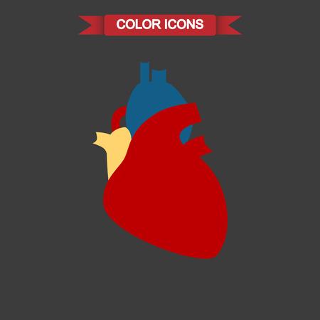 vital: Human heart color icon Illustration