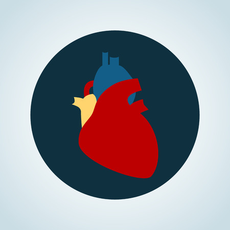 vital: Human heart color icon Illustration