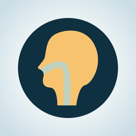 pharynx: Human throat color icon