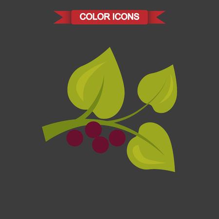 fruit stem: Color illustration of berry plant