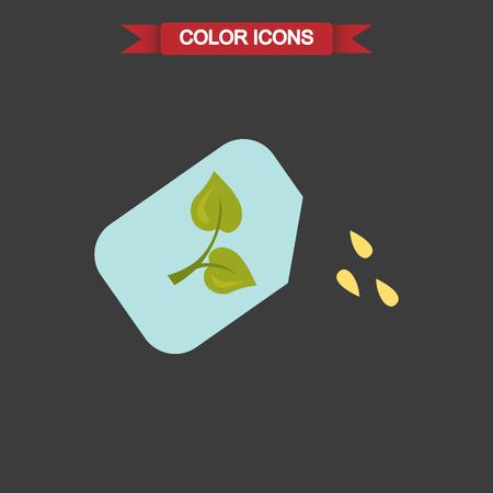 seeds: Color illustration of plant seeds