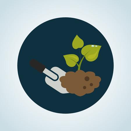 digging: Color illustration of digging the plant