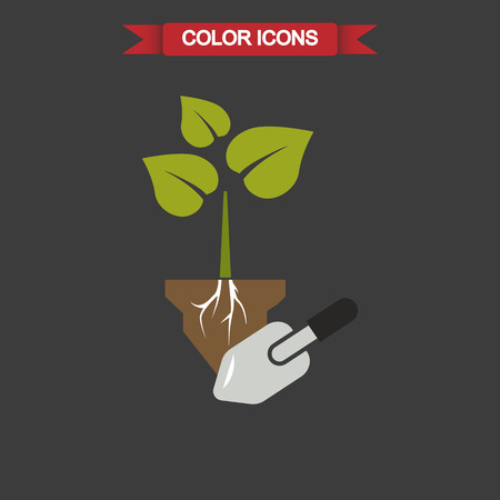 digging: Color illustration of digging the plant