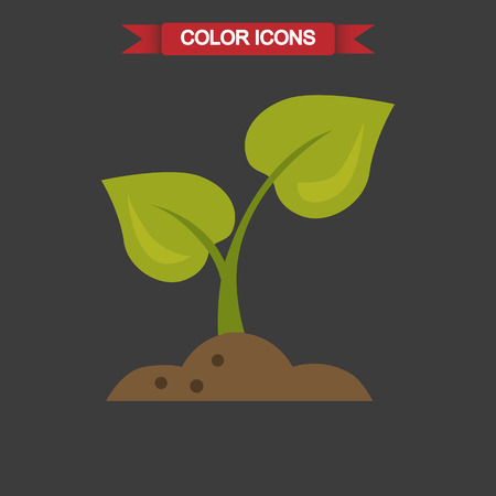 grren: Color illustration of plant