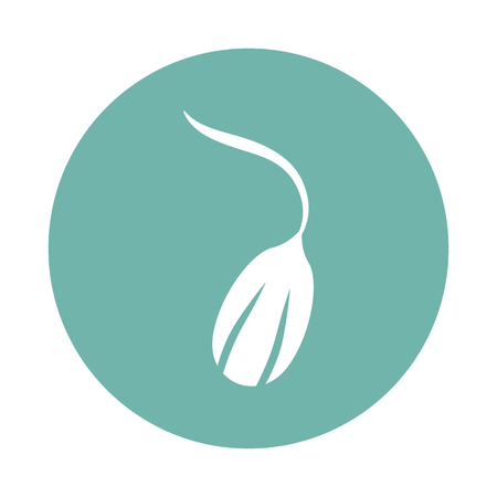 Germinated seed icon