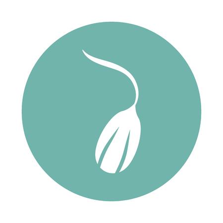 icona seme germinato