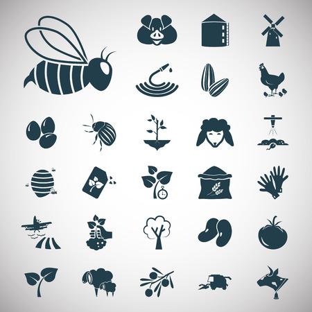 olive farm: Set of twenty seven agriculture icons Illustration