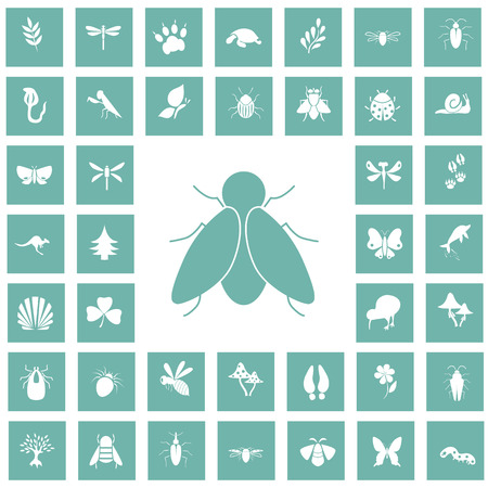 forty: Set of forty nature icons