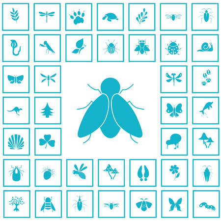 Set of forty nature icons