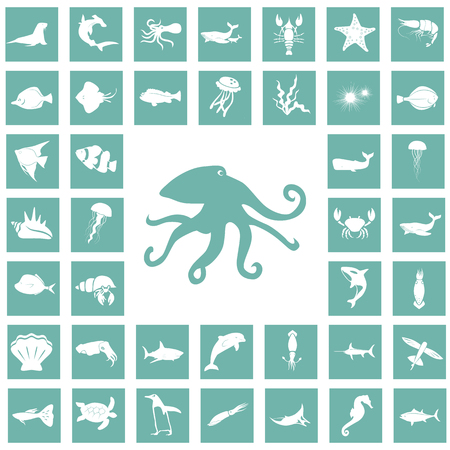 flounder: Set of forty sea animals icon