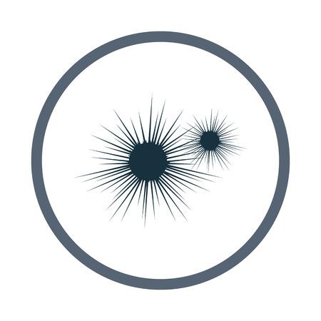 sea urchin: Sea urchin icon