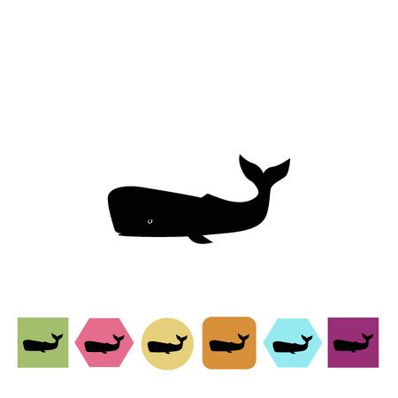 Sperm whale icon Illustration