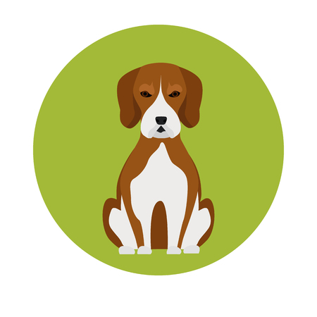 ear protection: Dog color flat icon