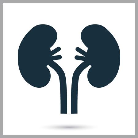 Menselijke nieren pictogram op de achtergrond