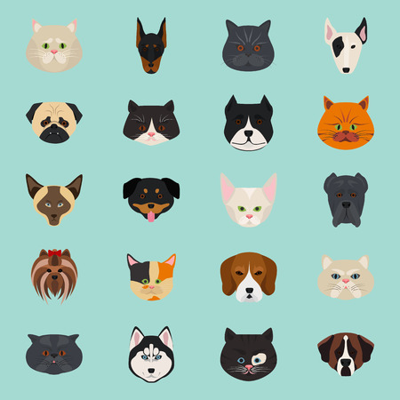 favorite colour: Cats and dogs color flat icon
