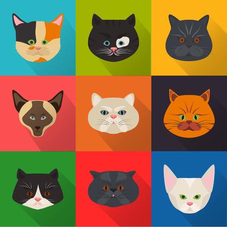 Cats color flat set icon Illustration