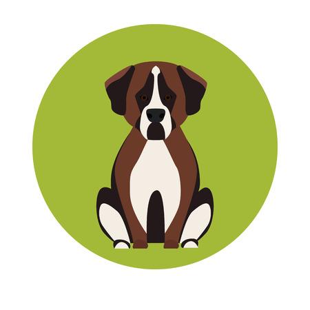 favorite colour: Dog color flat icon